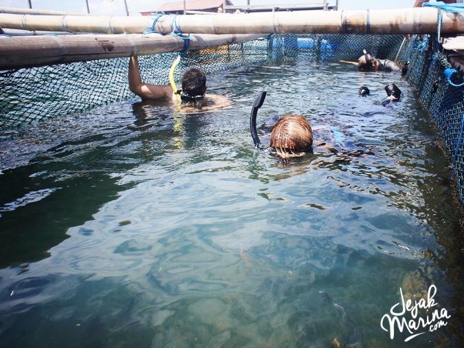 Bali_Sharks_Serangan_09