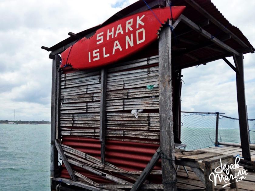 Bali_Sharks_Serangan_20